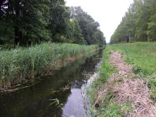 Ottómajori-csatorna